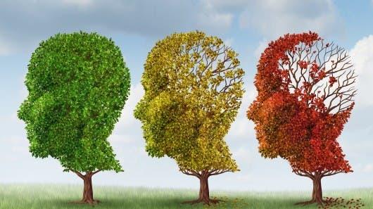 http://images.gizmag.com/hero/alzheimers-dementia-cure-yale-amyloid-treatment-9.jpg