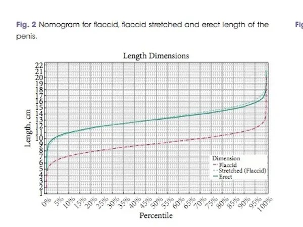 Good News Biggest Study Yet Of Penis Size Confirms -9674