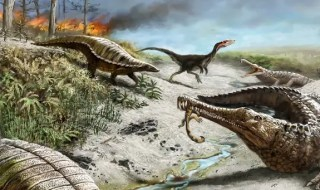 212 million years ago in what is now northern New Mexico, the landscape was dry and hot with common wildfires. Early dinosaurs such as the carnivorous dinosaur in background were small and rare, whereas other reptiles such as the long-snouted phytosaurs and armored aetosaurs were quite common. Illustration: Victor Leshyk