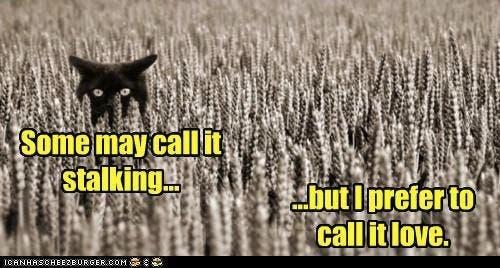 Stalking funny.