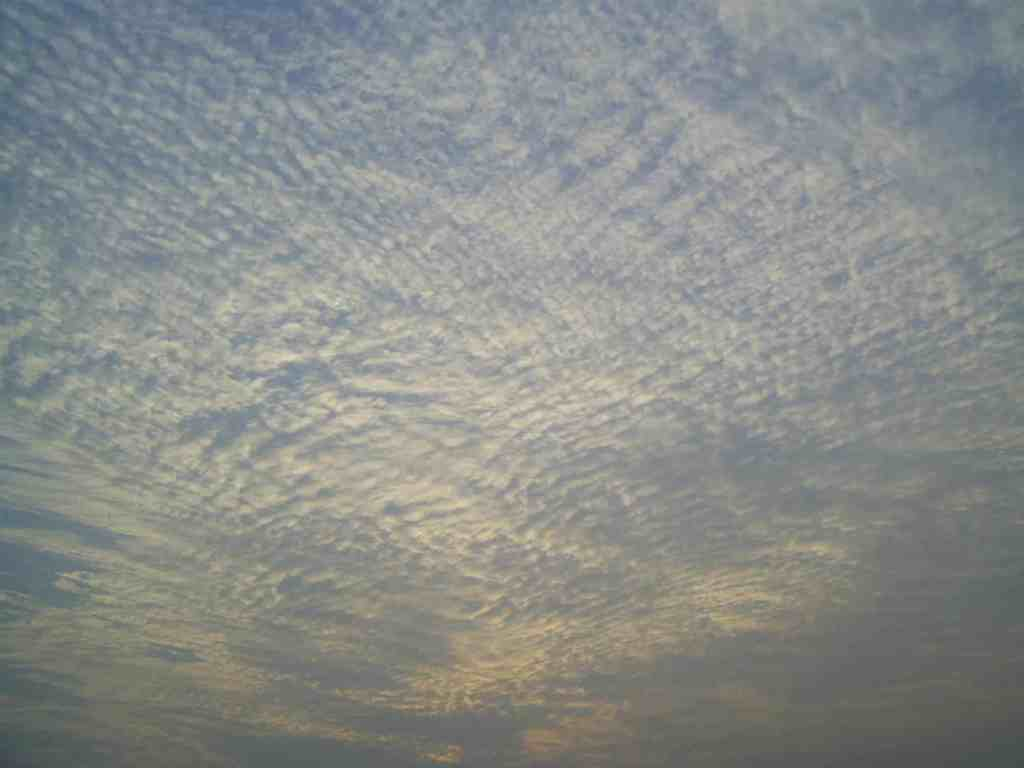 Cirrocumulus in Hong Kong. Credit: Wikimedia Commons.