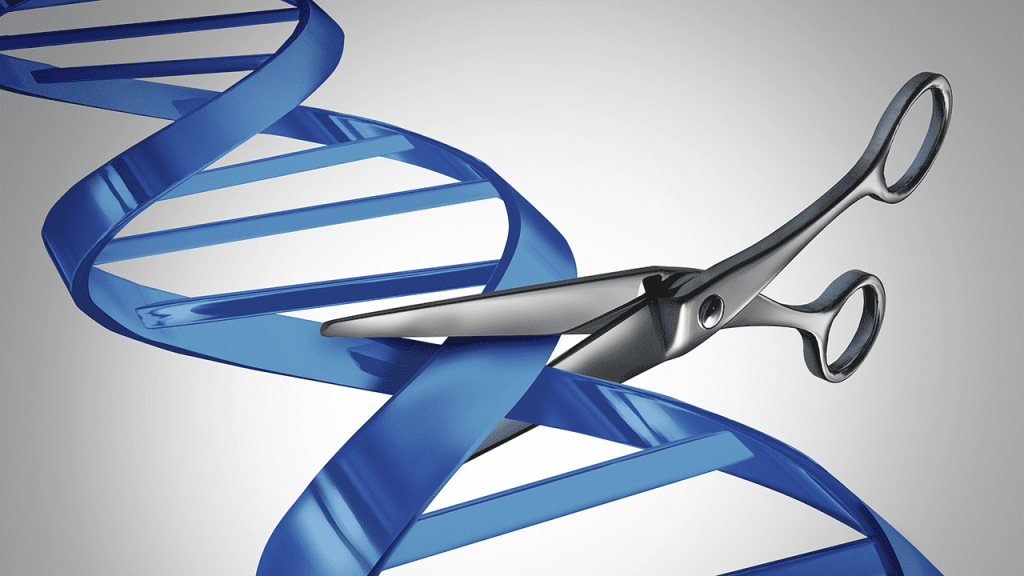 CRISPR has been likened to a molecular scissor that can precisely cut portions of DNA. Credit: Science Mag.
