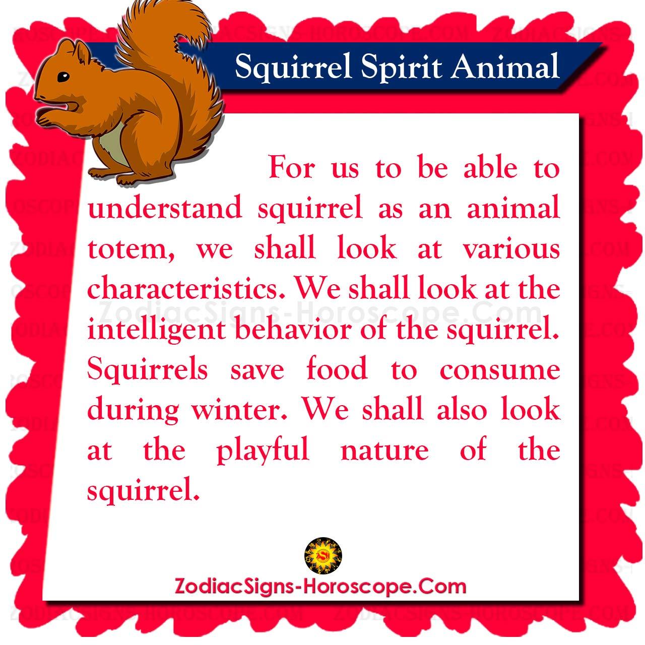 squirrel spirit animal meaning