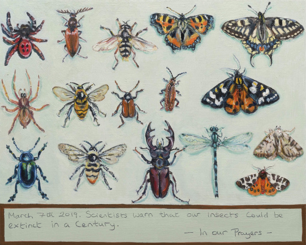 An Ex Votive painting showing rows of endangered Uk Insects , displayed like a victorian specimen drawer.