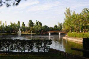 E lago