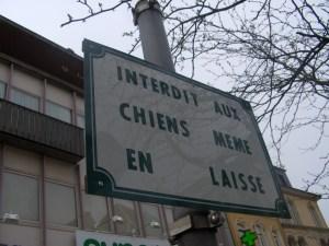 Interdit aux chiens même en laisse, Arlon, 2007