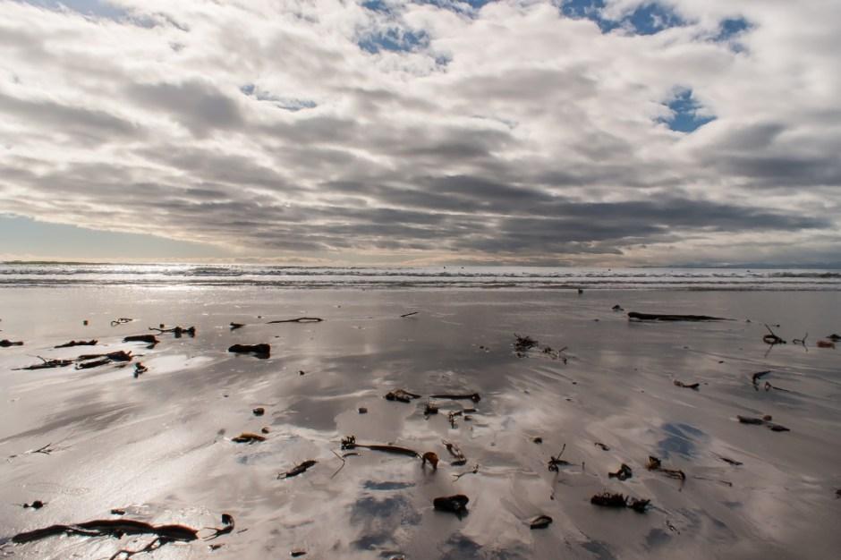 © fate atc - Ohope Beach