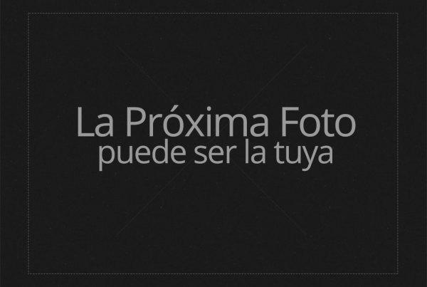 Curso Profesional de Fotografía