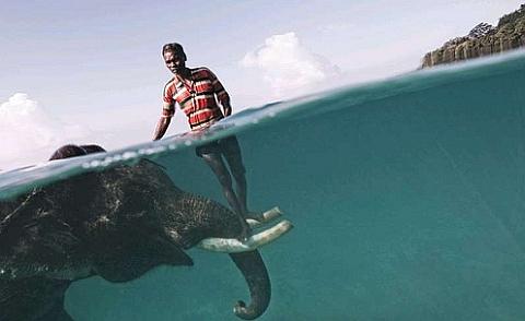 Nazroo, un conductor de elefantes, posa al lado de Rajan