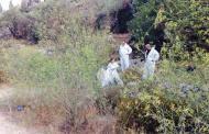 Лесничей открил разложения труп край варненско село