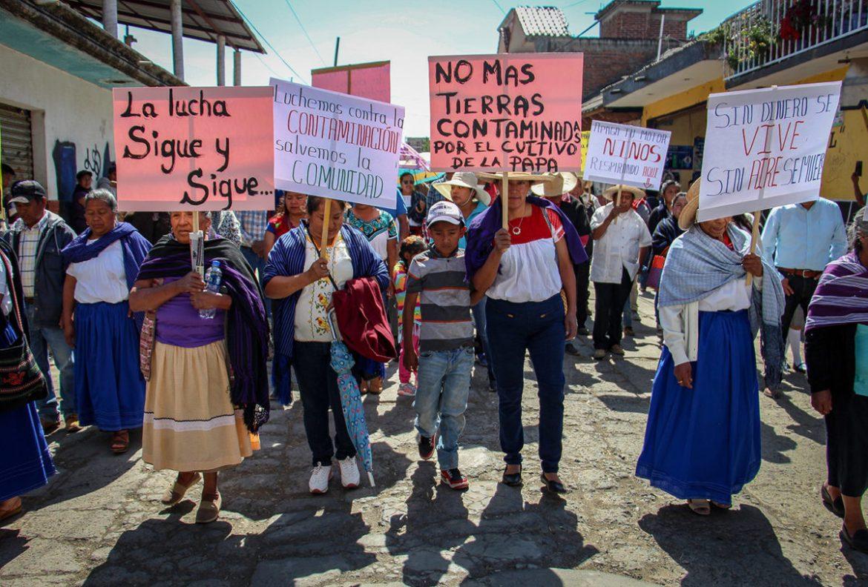 Cherán: ocho años de una lucha que no acaba - ZonaDocs