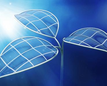 Planta Bionica