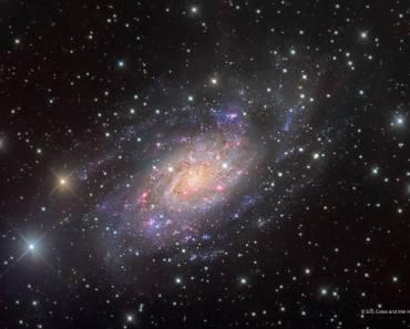 NGC 2403 en Camelopardalis