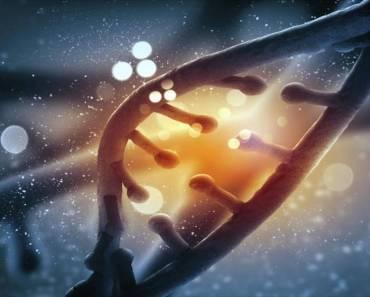 Casi el 17% de tu ADN no es humano, afirma un estudio