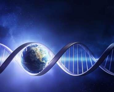 Ayudando a detener el cambio climático con ingeniería genética