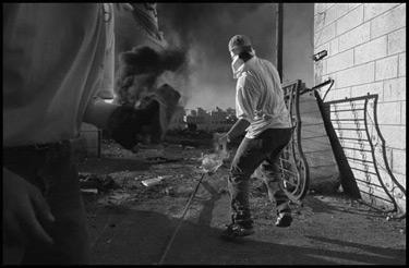 violencia.jpg