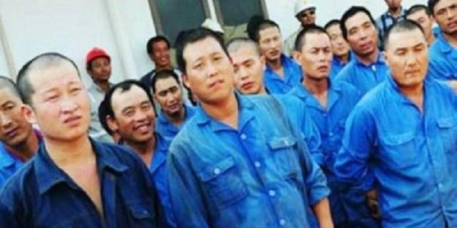 Video Viral : Rakyat Sultra Menolak Keras Kehadiran TKA China