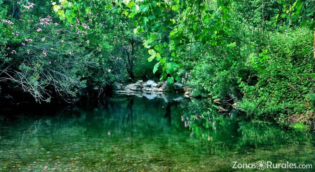 Hotel Centro de Naturaleza Caada Verde  Hostal Rural en