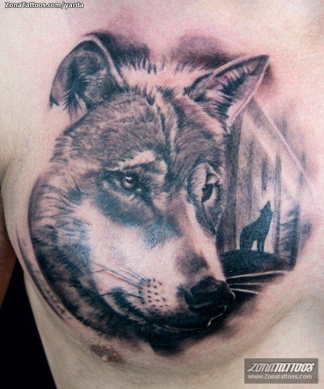 Tatuaje De Lobos Animales Pecho