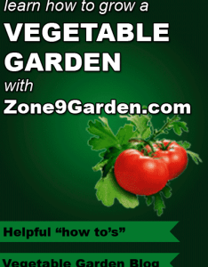 Learn how to grow  vegetable garden with zone garden including blog also zone fall planting guide rh