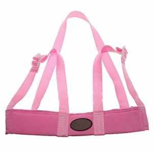 TOOGOO(R) Bebe, Enfant Toddler Safety facile Wash & Harnais Step marche Renes Assistant – Rose
