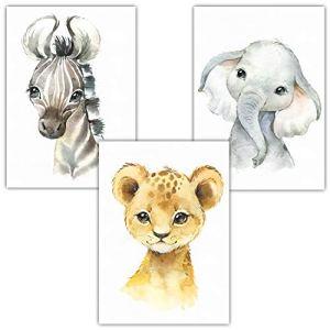 Frechdax® Lot de 3 Poster pour Chambre d'enfant Motif Animaux de la forêt Safari Afrique Animaux Portrait Animaux, 3er Set Elefant, Löwe, Zebra, DIN A4