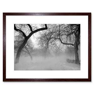 Nature Paysage Forêt brouillard Snow Ice Winter Noir Blanc Affiche encadrée B12X 4056 12 x 16 in – 30.5 x 40.7 cm marron