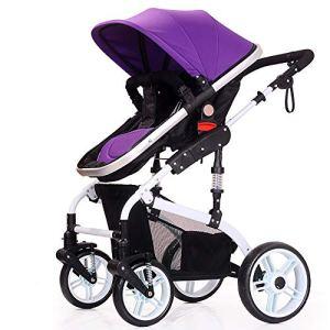 SCJ Poussette de Protection de sécurité, Poussette Commune Anti-pincement, Confort Respirant/Facile à Transporter/Anti-moustiques/Peut être Prise dans l'avion – (0-36 Mois),Purple