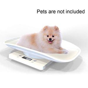 SUNERLORY Pèse-Personne 10 kg – Outil Intelligent numérique Durable et de Haute précision – Écran LCD rétroéclairé – Cadeau Clair, 293 X 206 X 58 Mm, Blanc