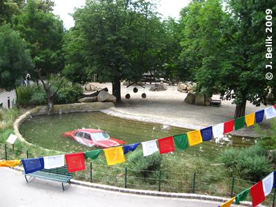 Auto im Nashornpool - Das ist Kunst? (16. Juni 2009)
