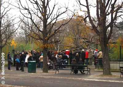 Alle wollen Fu Long noch ein mal sehen ..., 17. November 2009