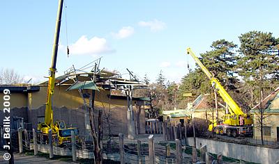 Die Kräne wurden am Vormittag bereit gestellt, 2. Dezember 2009
