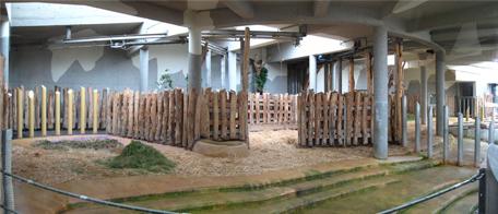 Blick in die Innenanlage mit Suhle (links) und extra abtrennbarem Teil (Mitte), ganz rechts hinter der Absperrung befindet sich der zweite Teil der Anlage. Das Wasser im Pool (vorne bei den Stufen) wird gerade abgelassen, 12. Juni 2009
