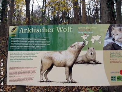 Die neue Info-Tafel bei den Arktischen Wölfen, 18. November 2010