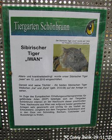 Erinnerungstafel am Tigergehege, 29. November 2010