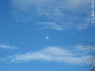 Winterhimmel mit Mond, Tiergarten Schönbrunn, 25. Februar 2010