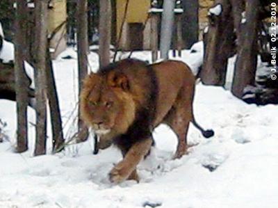 Owambo, 2. Dezember 2010