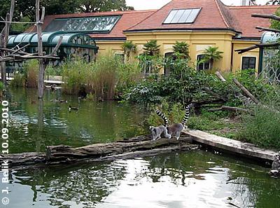 """Blick auf das Vogelhaus """"hinter dem Teich"""", 10. September 2010"""