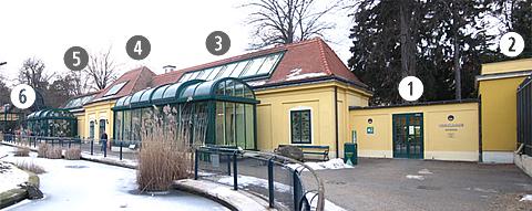 Blick auf das Vogelhaus im Tiergarten Schönbrunn: Eingang (1), Wüstenhalle (2), Savanne (3), Mittelteil (4), Tropen (5), Ausgang (6), 2. Jänner 2011