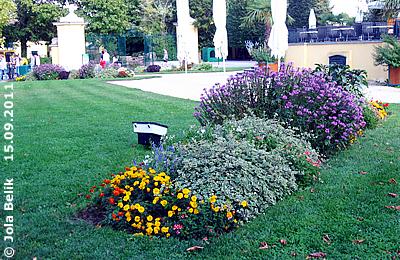 ... eines von acht großen Blumenbeeten um den Kaiserpavillon herum - hier haben die Freiwilligen Helfer mitgearbeitet! 15. September 2011