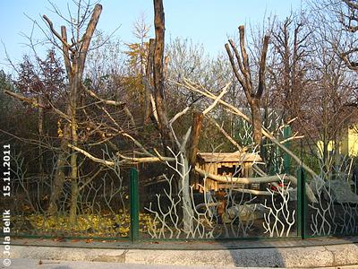Bald bekommt hier Fu Hu neue Nachbarn! Neue Katzenbär-Anlage, 15. November 2011