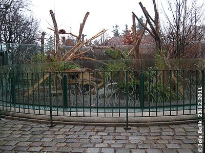 Die neue Absperrung bei den Roten Pandas, 23. Dezember 2011