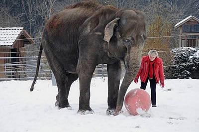 Mary und Geli, Winter 2011