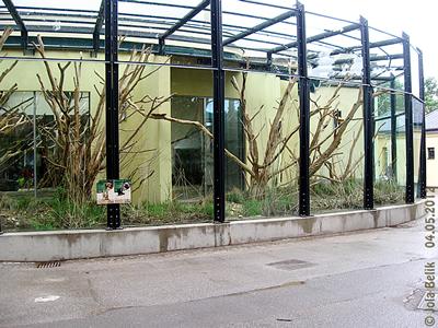 Blick auf den mittleren Teil der Außenanlage der Bärenstummelaffen und Erdmännchen, mit zahlreichen Klettermöglichkeiten, Gras und einem kleinen Wasserlauf sowie viel Platz zum Buddeln für die Erdmännchen! Affenhaus, 4. Mai 2012