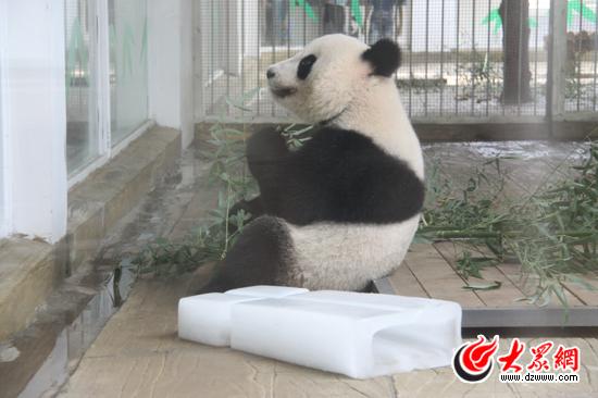 Fu Hu in Jinan