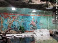 Im Jaguarhaus, Anlage Kaiman, 27.11.2013, Zoo Hellbrunn