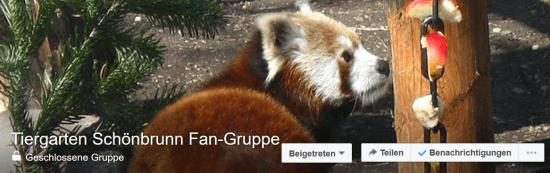 FB Fan-Gruppe