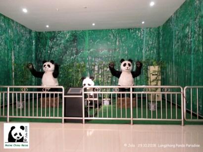 Panda Museum