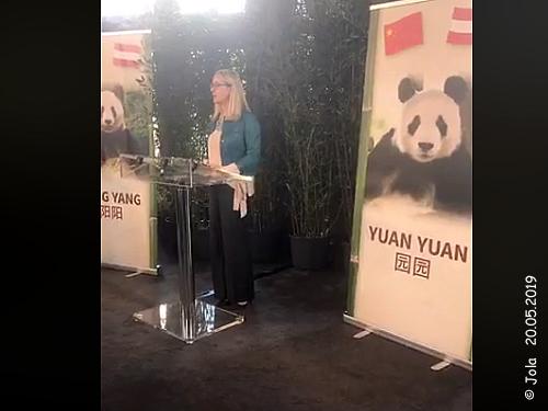 Yuan Yuan Übergabe