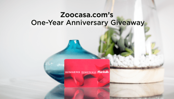 Celebrate Zoocasa's 1st Birthday